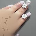 Photos: 爪(*´`*)