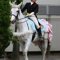 写真: 川崎競馬の誘導馬05月開催 誕生日記念レースVer-12-large