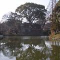 Photos: 桃ヶ池