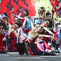 銀輪舞隊_07 - よさこい祭りin光が丘公園2011