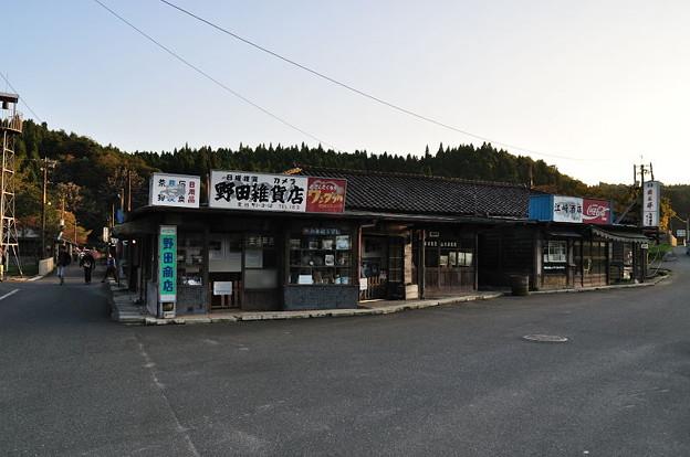 Photos: DSC_0368