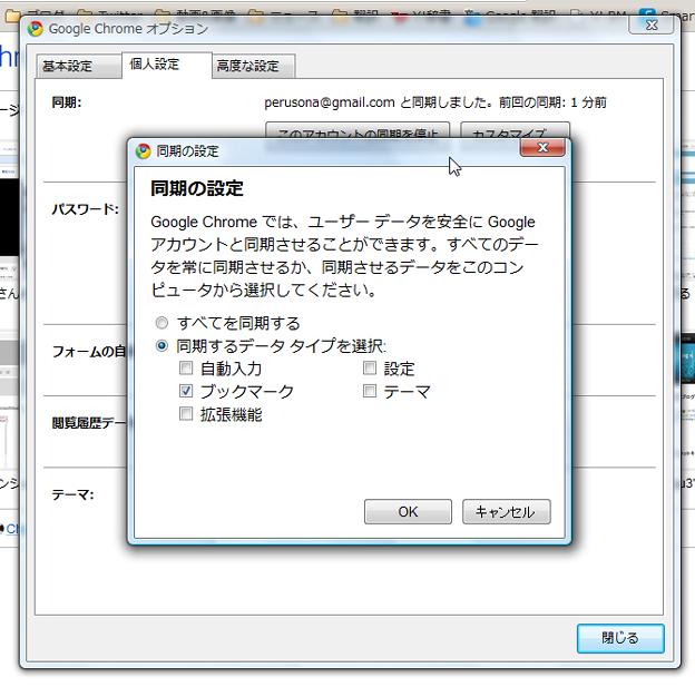 Chrome 6:同期設定(拡大)