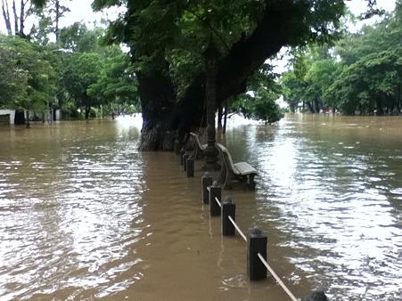 Siem Reap川あふれる7