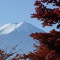 Photos: 秋の富士