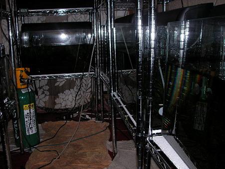 2011/03/11 004