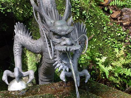 箱根 玉簾神社の龍様