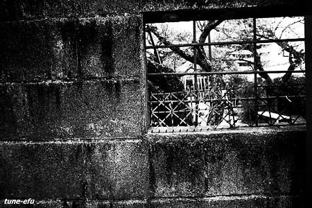 ブロック塀に窓