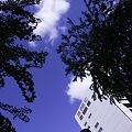 Photos: 2010-10-27の空