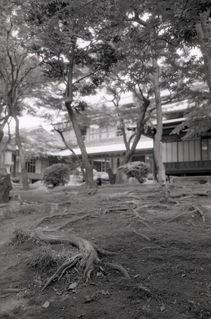 201206-01-016PZ
