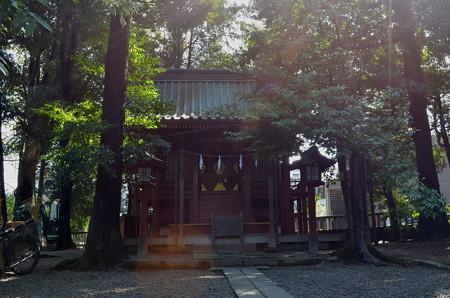 氷川神社(さいたま市)・天津神社