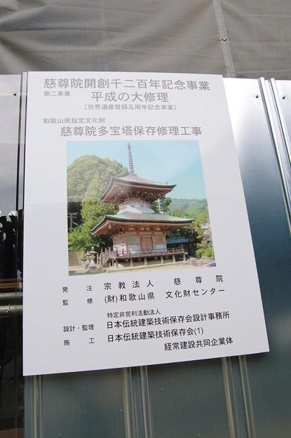 Photos: 高野山九度山 慈尊院多宝塔 2010年08月14日_DSC_0057