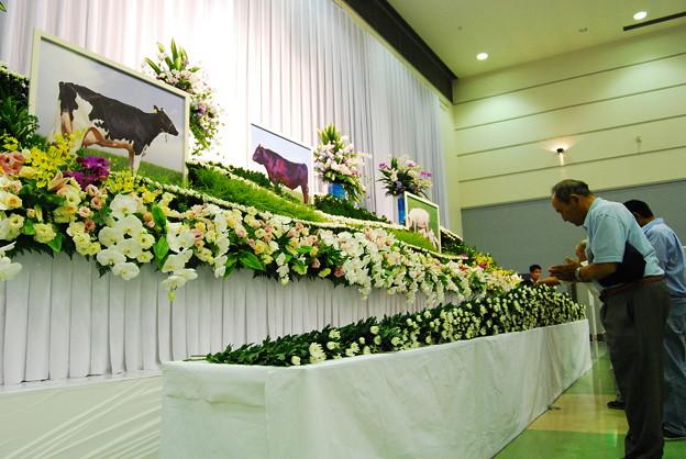 被災農家等による献花式8