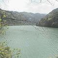 写真: 一ツ瀬川水系一ツ瀬ダムへ4