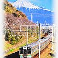 東海道本線 富士川-新蒲原 211系普通列車