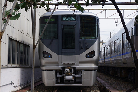 IMGP6308