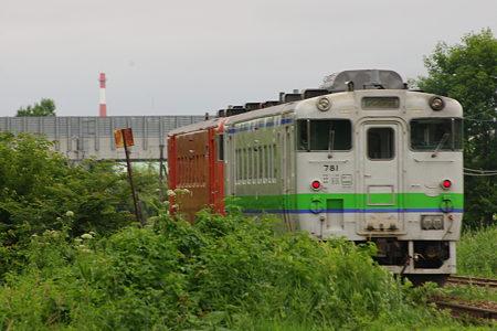 IMGP2536