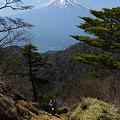 Photos: 三ッ峠からの富士山