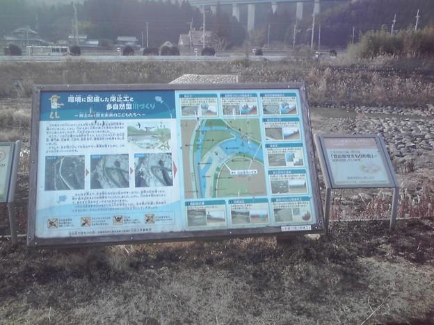 写真: 武庫川、日出坂堰の説明かんばん>