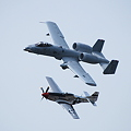 Heritage Flight_A-10 and P-51
