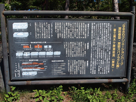 溶岩樹型について