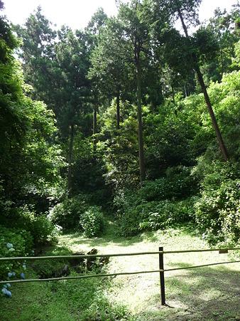 100615-明月院裏庭園-60