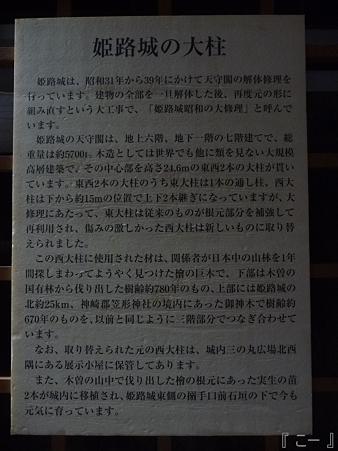 110417-姫路城 (157)