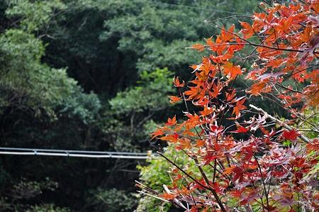 20101107_105909_raw