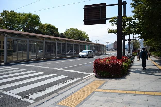 写真: D-1 旧市民球場前サイクルポート (遠景)
