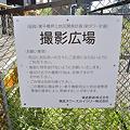 Photos: 撮影広場