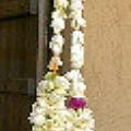 Photos: ジャスミンの花のレイ