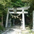 Photos: P1210825谷田神社