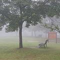 霧の丘公園