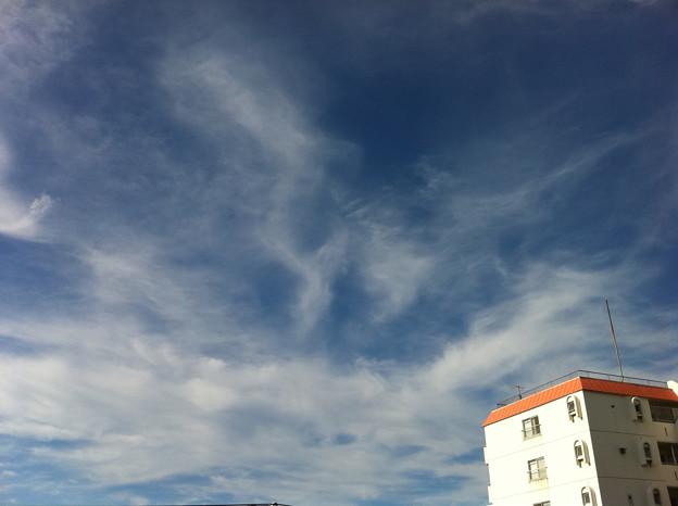 Photos: おはよー(^o^)空だけは秋な感じ~