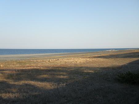 浜 散歩道