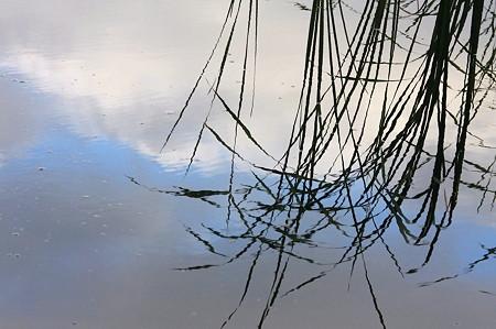2010.09.02 和泉川 水溜りに夏の雲