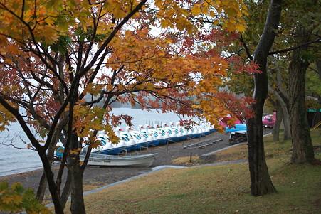 2010.10.26 十和田湖 雨の湖畔