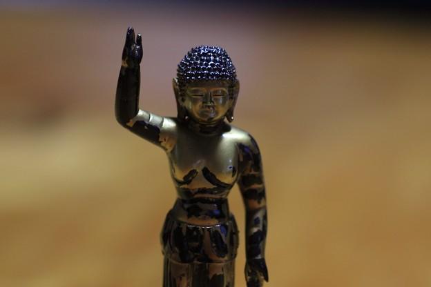Photos: 2010.11.15 東京国立博物館 東大寺大仏 誕生釈迦仏立像 海洋堂制作