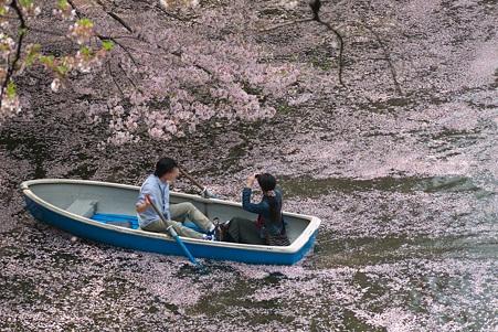2011.04.11 皇居 北の丸公園 千鳥ヶ淵-5