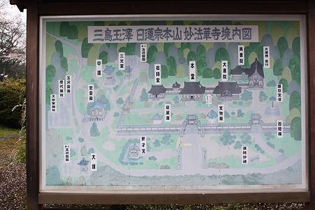 三島玉澤 日蓮宗本山 妙法華寺境内図