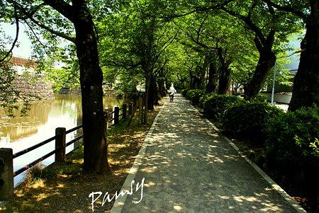 緑陰の径・・
