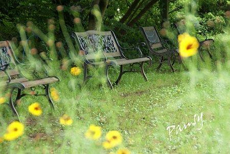 ベンチのある風景・・3