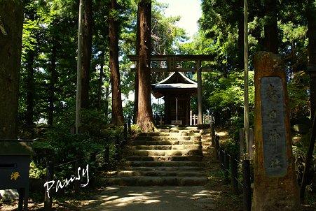 末社春日神社 米沢 上杉神社 9