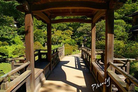夏の三渓園内苑・・8