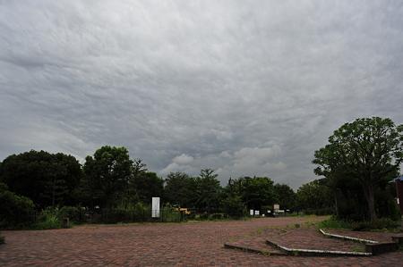 ザラザラした曇天