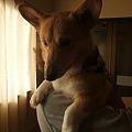 Photos: またね~~!