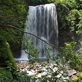 写真: 100720-5善五郎の滝4