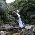 写真: 100521-13見帰りの滝4