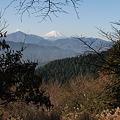 Photos: 101215-69もみじ台からの富士山