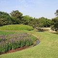 Photos: 110515-20岡山後楽園