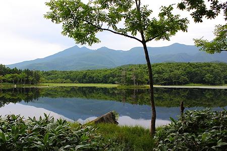 知床五湖 二湖02